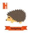 hedgehog h letter cute children animal alphabet in vector image vector image