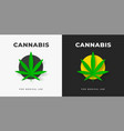 logo with cannabis leaves in a yellow circle on a vector image vector image
