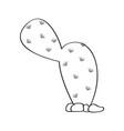cartoon cactus sketch vector image vector image