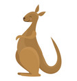 cartoon kangaroo a cute vector image