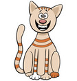 funny comic cat cartoon animal character vector image