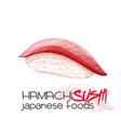 hamachi sushi vector image vector image