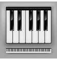 Piano Keyboard vector image vector image