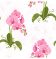 realistic phalaenopsis moth orchid floral pattern vector image vector image