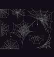 spider web set on dark background vector image