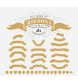 Vintage Ribbon Set vector image