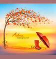 autumn nature background with trees and umbrella vector image vector image
