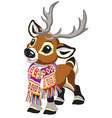 cartoon reindeer wearing a scarf vector image vector image