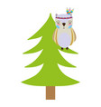 colorful ethnic owl animal in pine tree vector image