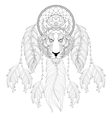 Hand drawn zentangle Dreamcatcher with tribal vector image vector image