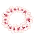 Round frame template blooming sakura pink flowers vector image vector image