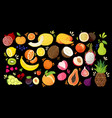 set colorful hand draw fruits - tropical sweet vector image vector image