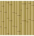 Abstract bamboo background EPS10 vector image