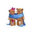 bears lovers in blanket isolated toys vector image