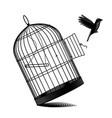 fallen birdcage and a black bird flying away vector image