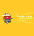 programming and coding website development banner vector image