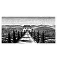 scenic view vineyards wide panoramic vine vector image vector image