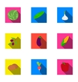 Vegetables set icons in flat style Big collection vector image vector image