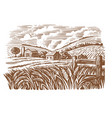 village on sunny day field wheat sketch vector image