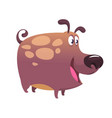 cartoon bulldog or boxer dog vector image vector image