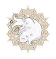 hand drawn entangle ornamental horse on mehendi vector image vector image