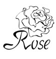 outline logo with rose vector image