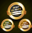 best quality beautiful golden label design vector image vector image