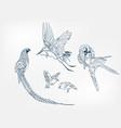 bird pheasant crane japanese paint style design vector image