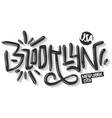 brooklyn new york usa hip hop related tag graffiti vector image vector image