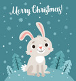cute card with rabbit and snowflakes vector image