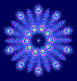 mandala on dark blue background vector image
