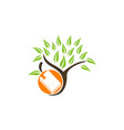 tree book and fruit vector image