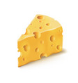 cheese piece with holes 3d realistic dairy vector image