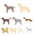 dog breeds set icons in cartoon style big vector image vector image