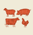 farm animals with meat cuts lines retro vector image vector image