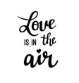 love is in the air lettering vector image vector image