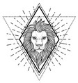 ornate lion head over sacred geometry african vector image