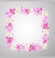 square frame with pink flowers of lily romantic vector image