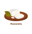 tender mozzarella with laurel leaves on wooden vector image vector image