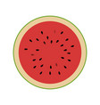 watermelon design vector image