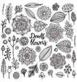 big set hand drawn flowers branches vector image