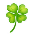 four leaf clover on st patrick day vector image vector image