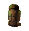 big brown rucksack vector image