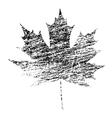Black Grunge Maple Leaf vector image