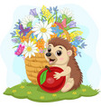 cartoon bahedgehog with apple and flowers vector image vector image