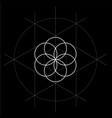 flower of life with construction lines sacred vector image