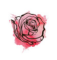 flower red roses hand drawn vector image