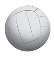 isolated volleyball ball vector image vector image