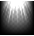 Light rays on black sunbeam scene transparent vector image vector image