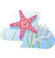 Underwater starfish coral algae vector image vector image